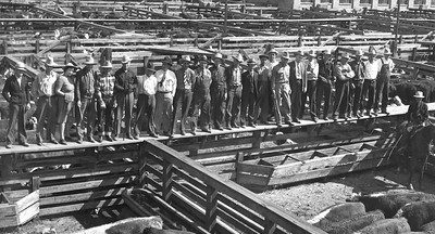 A row of men wearing hats and some with ties, some in flannel or other work clothes standing on the board walk overlooking the Open Union Stockyards. Photo obtained from Don Strack