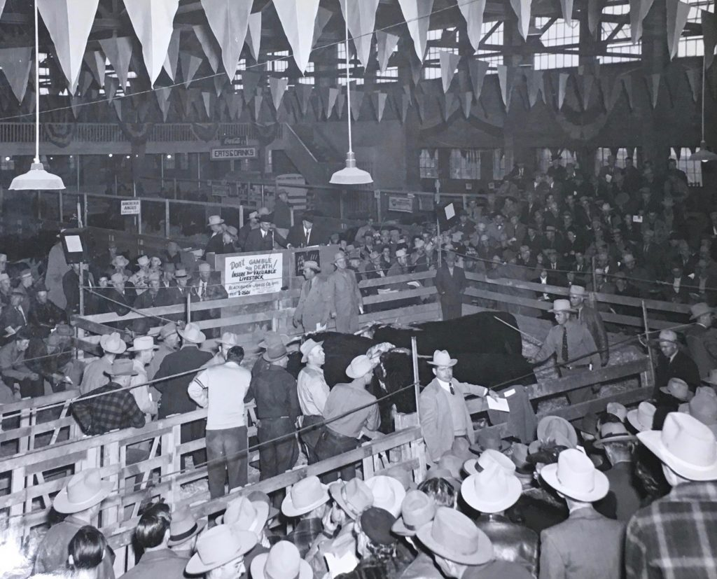 "1948 Show. Auction Ring, Coliseum. Inside the coliseum the floor is packed with pens of livestock and crowds, mostly men wearing cowboy hats and a few women. One is waring a fur coat and a hat. The ceiling is draped with triangular flags and announcers stand on a raised platform at a microphone. The platform has a sign in front that reads ""Don't gamble with death! Insure your valuable livestock."" Blackburn - Jones Co."" Special Collections Department, Stewart Library, Weber State University"