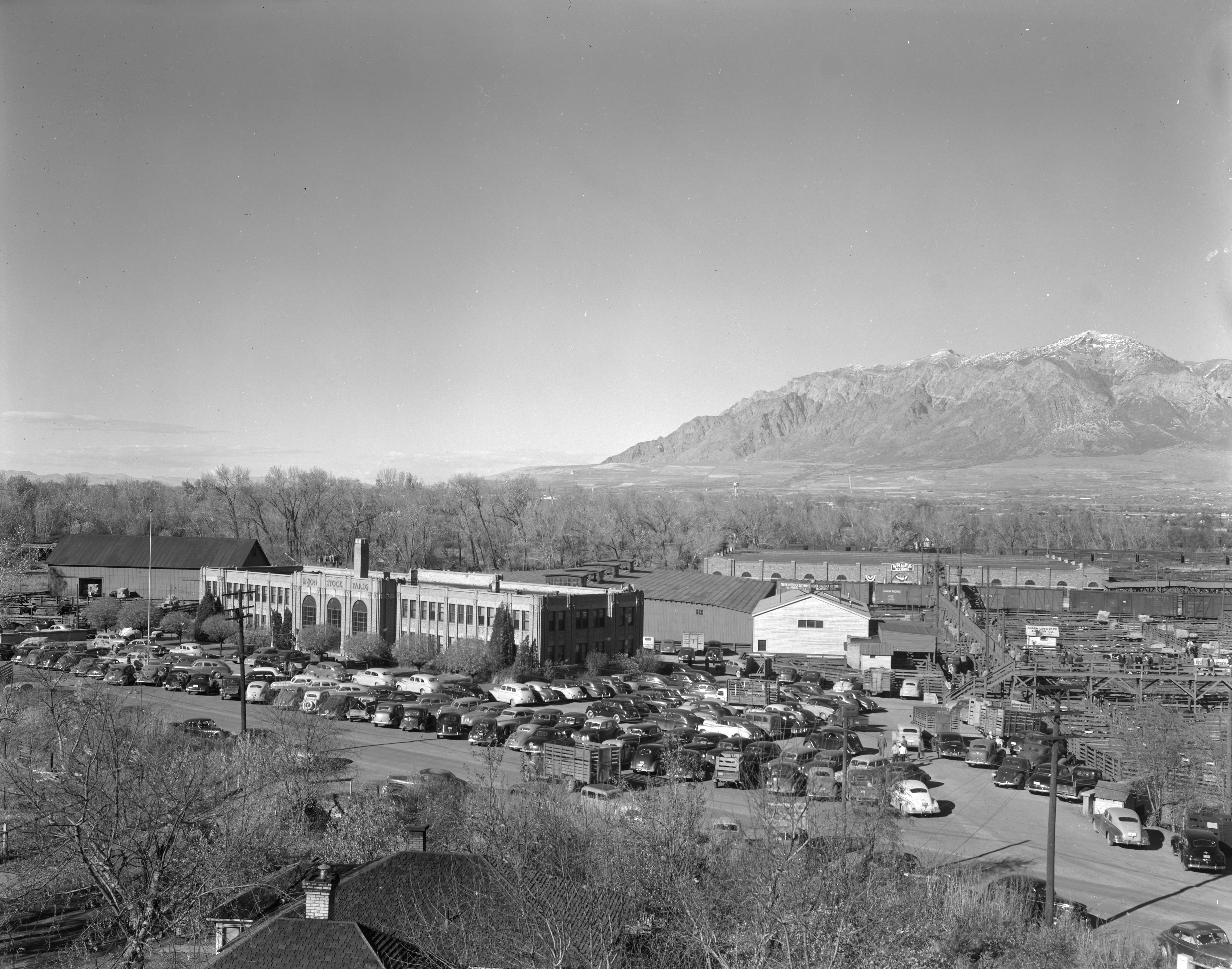 View of the Ogden Union Stockyards Exchange building from the viaduct. 1944 image showing parking lot crowded with cars. It must be auction day. Thank you to Don Strack for generously sharing this photo, part of his extensive gallery.